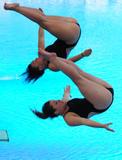 http://img183.imagevenue.com/loc106/th_43144_diving_world_champs_shanghai_2011_033_122_106lo.jpg