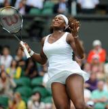 Serena Williams Nude Fakes  NakedCelebGallerycom